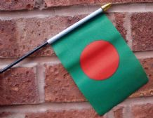 HAND WAVING FLAG (SMALL) - Bangladesh